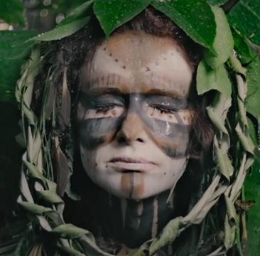 Le roi des forêts